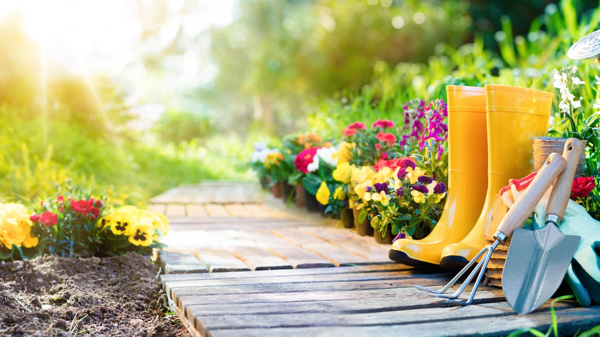 Top Gardening Tips For Landlords